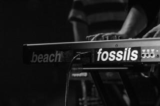 Beach Fossils4